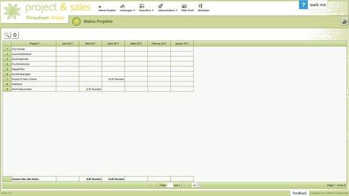 1. Produktbild Project & Sales Timesheet Online