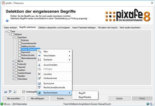 27. Produktbild pixafe – DIE Bilderdatenbank