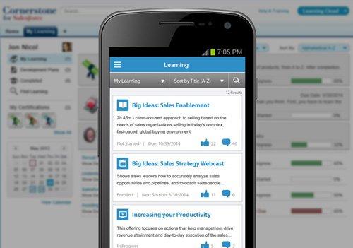 4. Produktbild Cornerstone for Salesforce