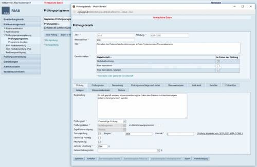 4. Produktbild RIAS Revisionssoftware