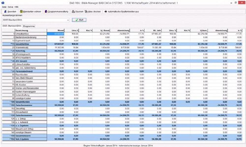 2. BWA Manager/ Softwarelösung für Steuerberater/Unternehmer/Speditionen
