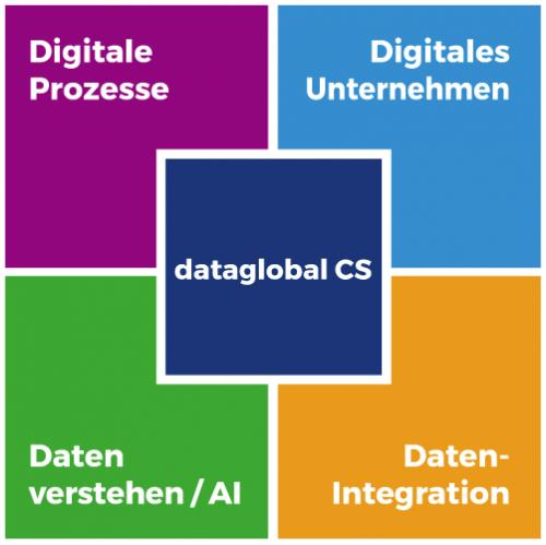 dataglobal CS Software