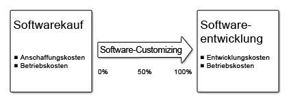 Software Customizing