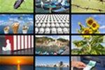 Software zur Verwaltung von Medien- und Bilddaten für einen Natursteinhandel gesucht
