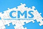 IT-Dienstleister sucht Content-Management-System