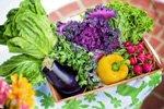 Cateringunternehmen (KiTa- und Schulverpflegung) sucht Kunden- und Auftragsverwaltung