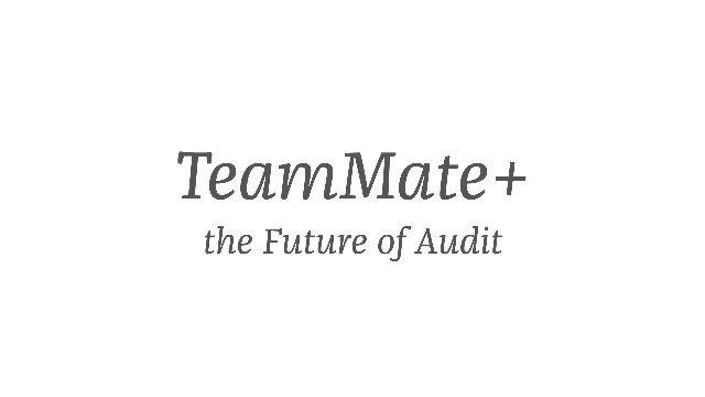 1. ProduktvideoTeamMate+