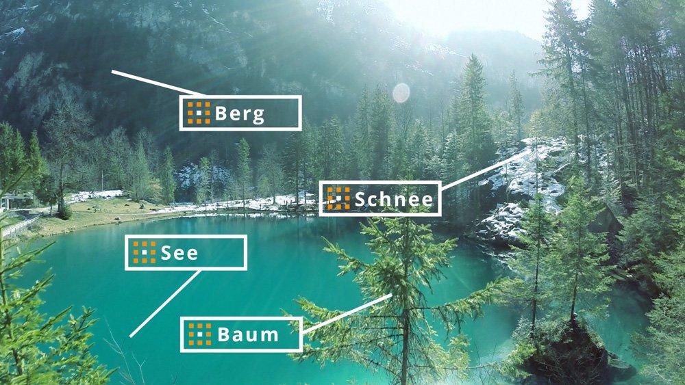 Bilddatenbank mit Autotagging - automatische Beschriftung in der Bilderdatenbank pixafe