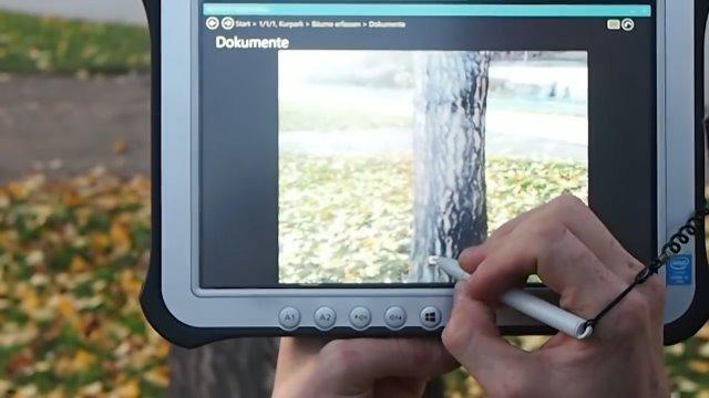 Mobile Baumkontrolle